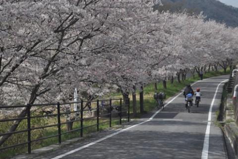 吉井川沿いを走る!片鉄ロマン街道コース(備前市)