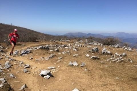 【人気あとわずか】はじめての鈴鹿山脈絶景トレイルラン
