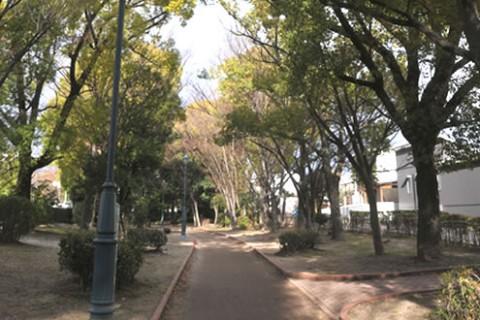 緑のトンネルを駆け抜ける。元茨木川緑地コース(茨木市)