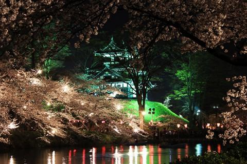 日本三大夜桜の高田公園で桜を堪能するコース(上越市)