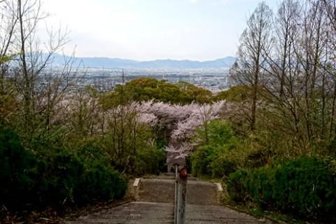 林道を抜け、緑深い山を散策。眉山・大滝山コース(徳島市)