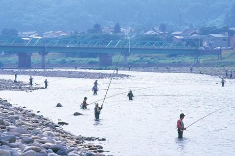 四季の風情を楽しむ九頭竜川サイクリングロード(永平寺町)