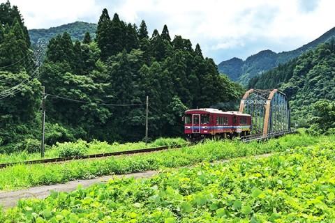 長良川沿いを走る旅ラン。みなみ子宝温泉コース(関市)