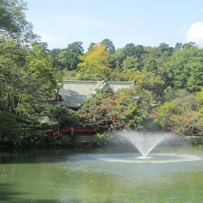 約9km地点が井の頭公園、弁天池です。