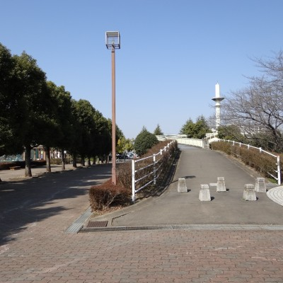 春は桜の名所!岩鼻運動公園周回コース(東松山市)