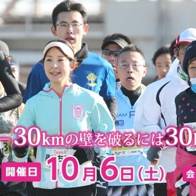 大阪30K 秋大会 ボランティア募集