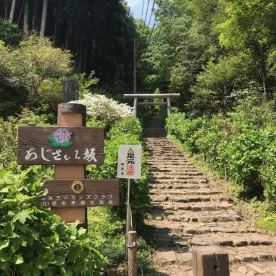 [JoyRun☆ 968th ]大人の遠足 小江戸「栃木」発 あじさい坂と蔵の街マラニック