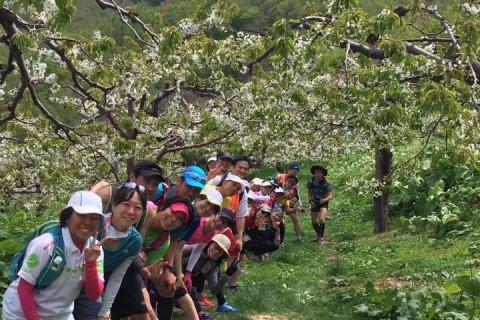 仁木町&余市町ワイナリー&果樹園巡りマラニック