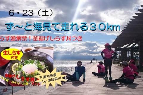 第8回 しらす漁解禁だよ!ず~と海見て走れる30km『とびしま海道』 下蒲刈島2周ランランラン