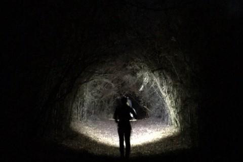 夜のトレイルに足を踏み入れよう【RunField】ナイトトレイルセッションin高尾