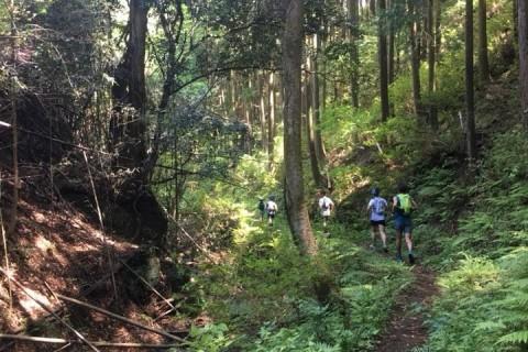 自然を満喫しよう【RunField】トレイルランニングセッションin足利・栃木