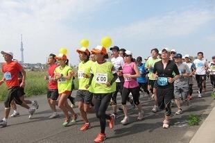 フルマラソンに向けたトレーニングイベント「30Kシリーズ」