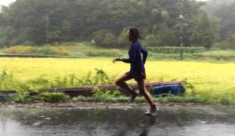 箱根駅伝出場の大学駅伝チームもトレーニングに使用するコース。田園風景の中、集中できる