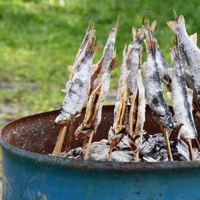 自分で捕まえたイワナを炭で焼く体験ができます!