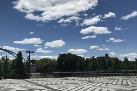 【深緑】フレッシュラン@駒沢新規メンバー募集:毎週水曜日・駒沢公園(コーチ指導あり)