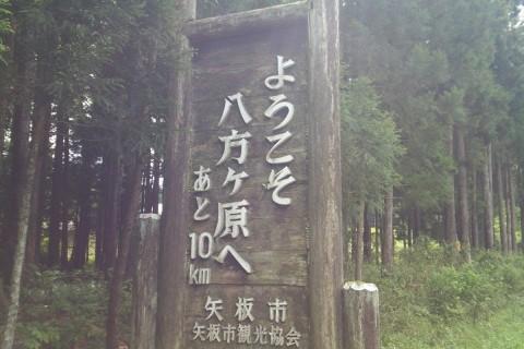 夏休み企画 栃木県矢板市八方ヶ原の坂トレ