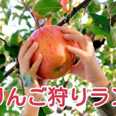蜜たっぷりの紅い宝石果実♪矢板旅りんご狩りラン☆