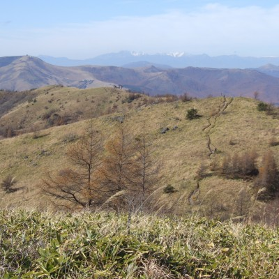八ヶ岳山麓スーパートレイルラン