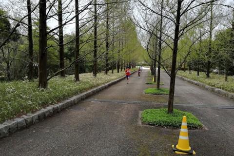 神戸森林植物園クロスカントリー駅伝