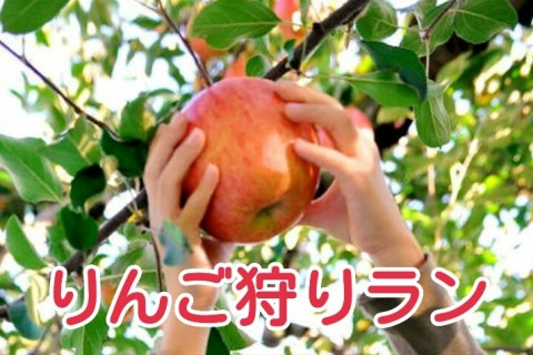 蜜たっぷりの紅い宝石果実♪矢板りんご狩りゆるラン☆