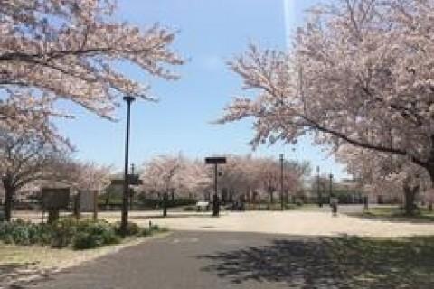 第2回 大島小松川公園&荒川エコ・ジャーニーマラソン