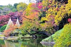 5km付近は旧細川藩江戸下屋敷、肥後細川公園を案内します。。