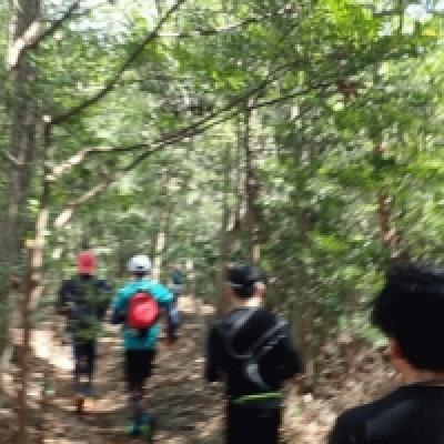 比叡山に向かう sean1