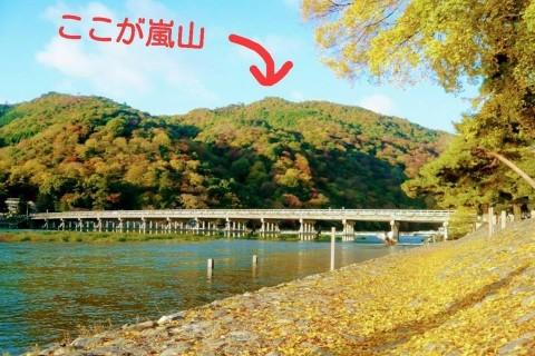 【嵐山musubi-cafe】ビギナーOK☆トレイルラン ~ホントの嵐山へ行こう!~