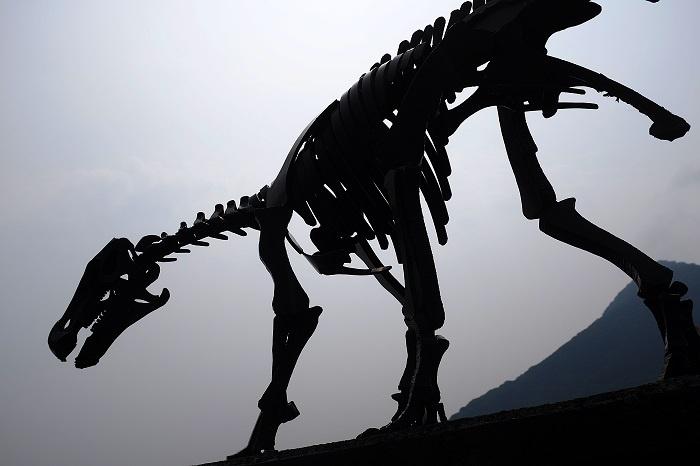 沿道の恐竜オブジェ