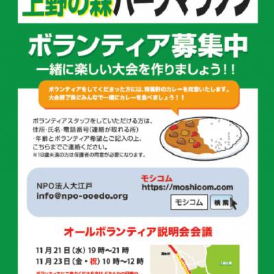 第6回 上野の森マラソン ボランティア