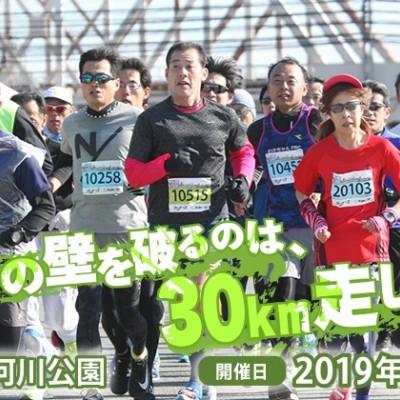 大阪30K 冬大会 ボランティア募集