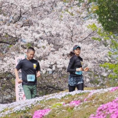 日本で一番きれいなマラソン?です