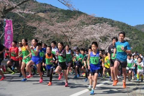 第38回川根桜まつり走ろう会