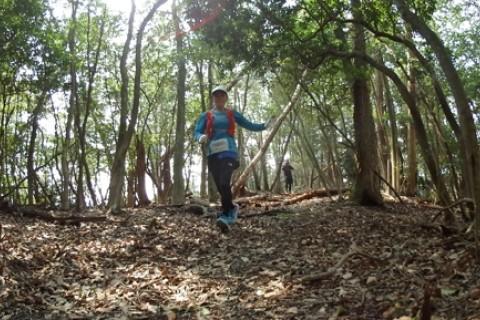 京都 宇治から伏見へ 歴史めぐり&天下峰トレイルマラニック2019 約30km