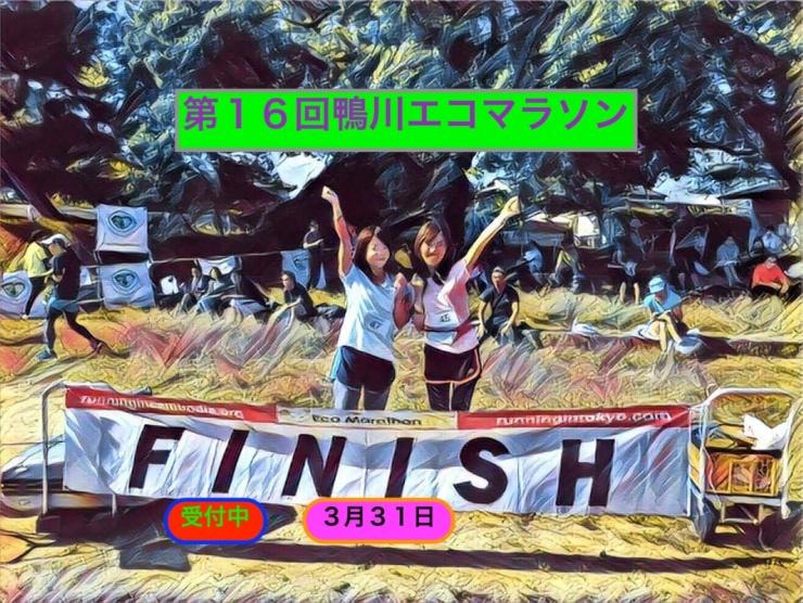 第16回鴨川エコマラソン