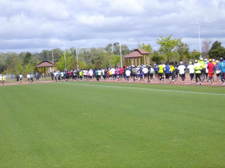 昨年の参加人数は250名と最初から最後までストレスなく走ることが出来ます。