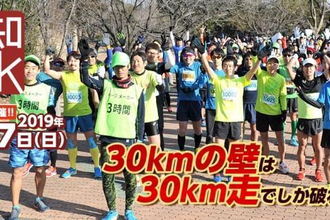 2019/2/17 愛知30K <レイトエントリー>