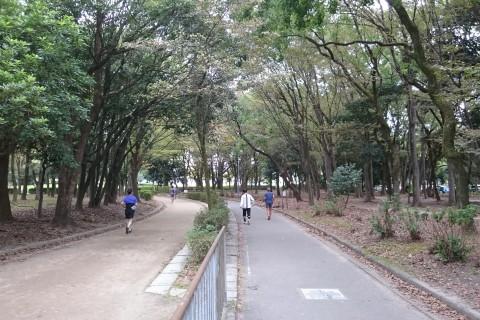姿勢を意識して、ゆっくり走る。名城公園RUN
