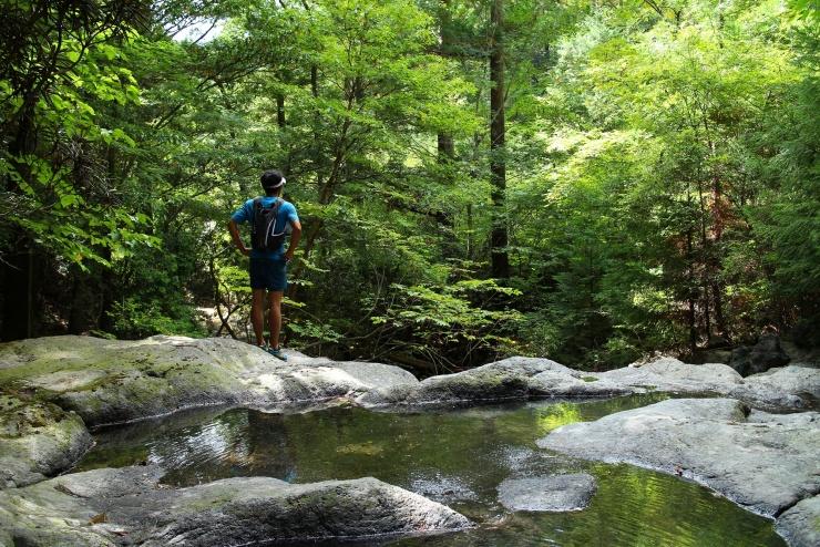 自然の中の澄んだ空気、風や水の音、木々の香り、自然とのふれあいを楽しみながら心豊かになるトレイルランニング。昨日とは違う一日をビスケットがご案内いたします。
