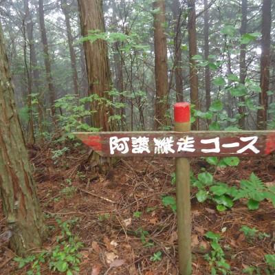 登りきったら縦走林道