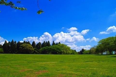 クロスカントリーIN昭和の森公園&いちご狩り