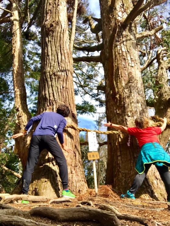 高槻ポンポン山 ハイキングイベント