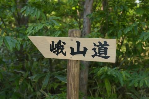 第5回峨山道トレイルラン(ショートコース3km・6km・10km)