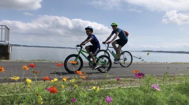 ファミリーサイクリング 第5回くるっと霞ヶ浦 35km -大人の里山オプション付き-