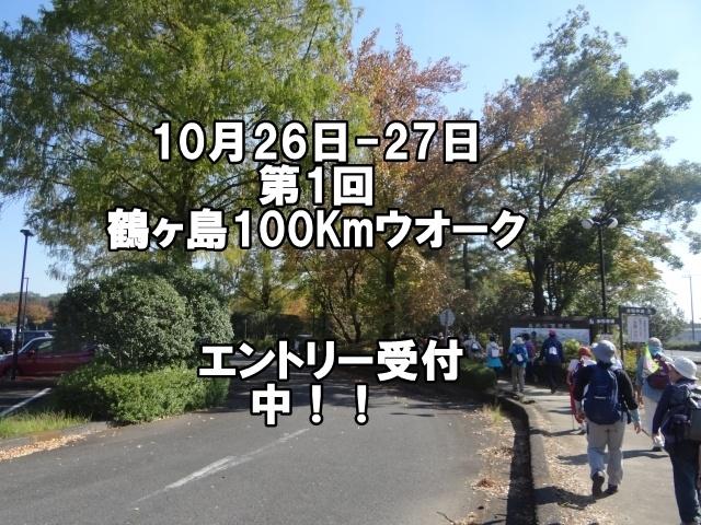 第1回鶴ヶ島100Kmウオーク