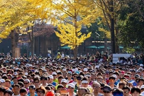 「第39回つくばマラソン」臨時駐車場申込み