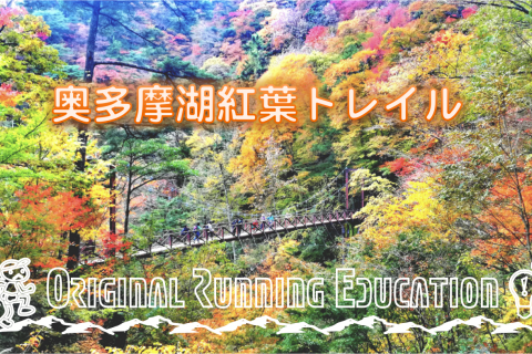【初心者向け】11/3(日)  奥多摩湖紅葉巡りトレイルラン
