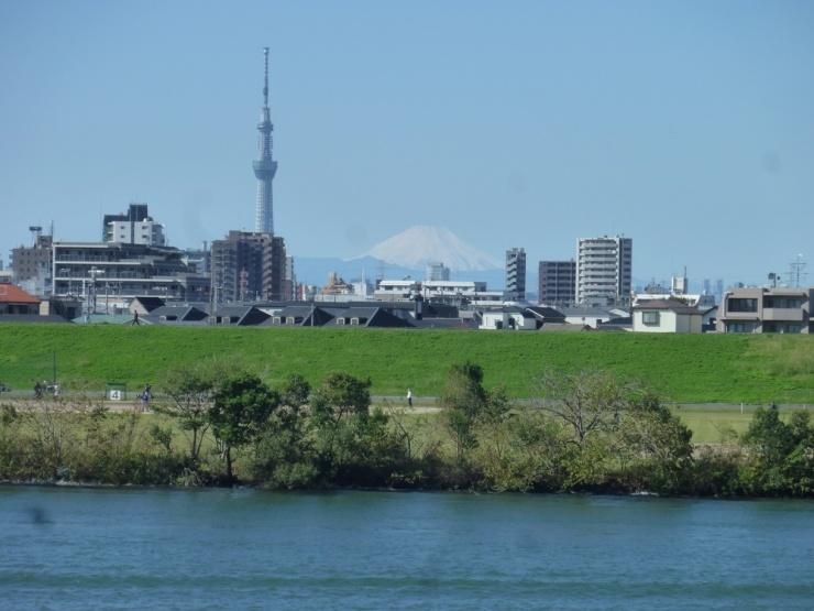 江戸川を巡る  9/17/31km  全コース自由歩行