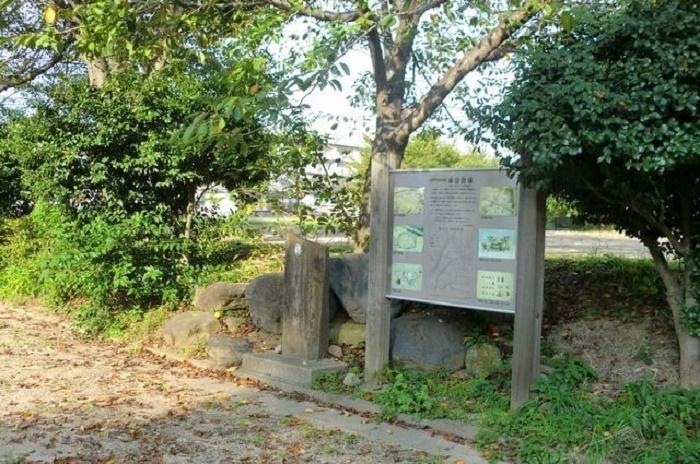 縄文銀座の今と小金城址公園を巡る 約7km  団体歩行