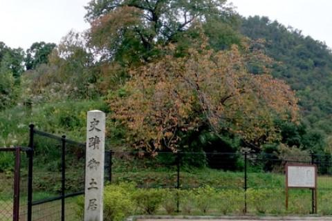 やんちゃ村のロゲイニングマラニック 「御土居(おどい)めぐりと京都探検マラニック」